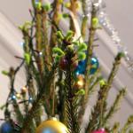 Через две недели после Нового года на елке распустились почки